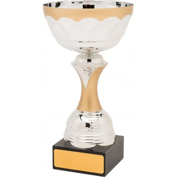 Quality Gold and Silver Cup - Avail. in 5 Sizes: 14cm (Euro 7.10), 16.5cm (Euro 8.20), 19cm (Euro 9.70),  22.5cm (Euro 11.90) and 26cm (Euro 15.70)