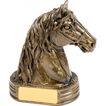 High Quality Solid Resin Award ~ 17cm High (Euro 18.20)