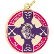Camogie - Full Colour Medallion ~ 38mm - Available In Gold and Silver ~ (Euro 3.00)